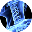 At Orthopedic Associates, we specialize in treatment of the neck